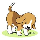 yjimage.jpg犬